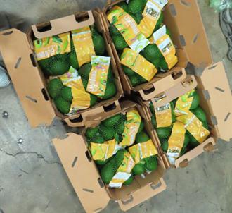 好市多酪梨又出包 逾3千公斤全數銷毀 恐暫停進口