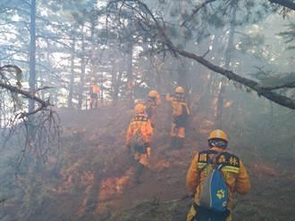 杜鵑營地森林火災燒超過50小時 森林護管員開闢防火線