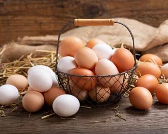 雞蛋的蛋黃顏色越深越營養?好蛋就要這樣挑
