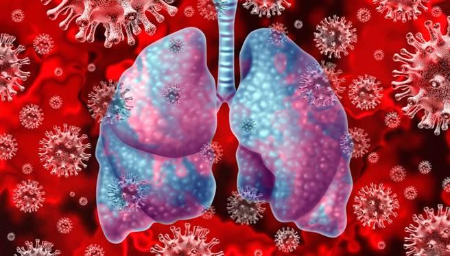 澳洲與美國的研究團隊開發出能夠降低99.9%新冠病毒量的實驗性抗病毒療法-基因靜默RNA(gene-silencing RNA)技術,能夠改善染疫老鼠的存活率及死亡率。(示意圖/shutterstock)