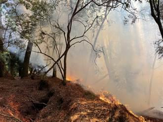 谷關七雄「馬崙山」森林大火 地勢陡峭救火難度高