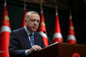 流亡海外土耳其黑道大哥猛爆料 艾爾段傷神