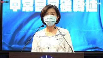 藍中常委建議暫緩黨主席選舉 江啟臣裁示研議因應方案