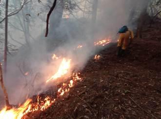 火燒馬崙山延燒2.8公頃 陸空動員全力搶滅