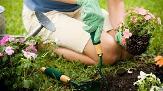 他在新家草坪挖到混凝土 鑿開驚見「隱藏設施」秒傻眼