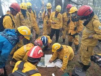 八通關杜鵑營地森林大火未滅損失難估 嘉義林管處將對登山客求償