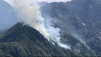 玉山森林大火狂燒5天55公頃 肇事者竟是NCC官員