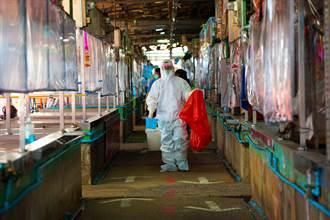 泰菜市場逾850例群聚感染 兇手:公共廁所
