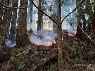 因應疫情、玉山、馬崙山森林火災 民眾請勿前往山區