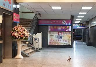 防疫雷厲稽查 高雄九如路休閒娛樂場所僅剩鴿子駐足