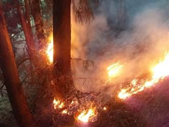 馬崙山森林大火已4天3夜 延燒4.1公頃