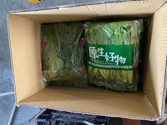 疫情蔓延宅經濟升溫 花蓮2農會推有機蔬菜箱宅配