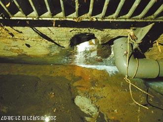 乳膠汙染溝渠 土城工廠最高罰600萬