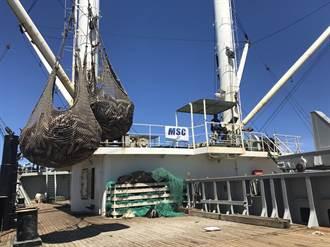 豐群水產與台灣鮪延繩釣業者 共同發展永續漁業
