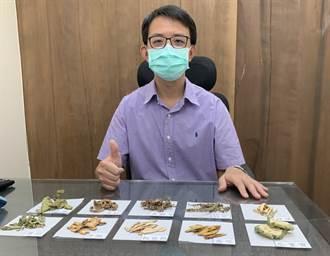 台灣清冠1號詢問度大增 醫籲:治療用藥 民眾切勿自行服用