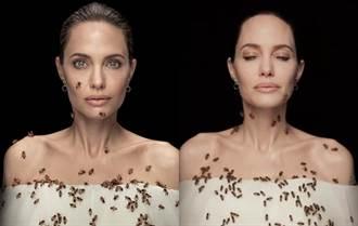 安潔莉娜裘莉3天沒洗澡 遭百隻蜜蜂爬滿身險螫私處