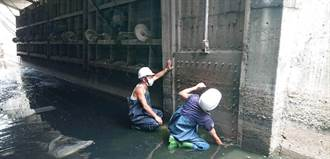 新莊中港大排閘門維修 河廊維持低水位