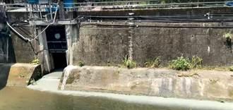 新第營造公司違法排放泥水 害大坑溪染白