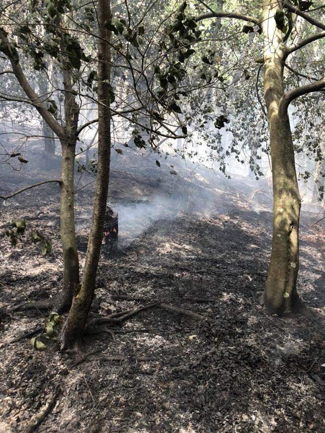 環山部落對面的山頭發生森林火災,幸搶救1小時獲控制。(民眾提供/王文吉台中傳真)