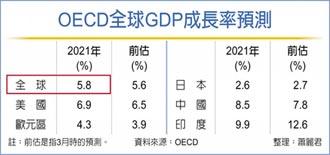 全球經濟成長 半世紀最強勁