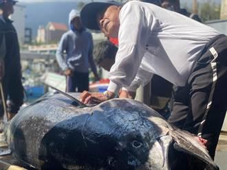 餐廳歇業魚價砍半 台東魚商改推宅配:包到手軟
