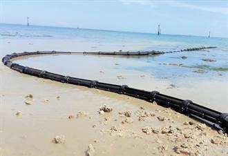 免繞經美國 巴西葡萄牙首條直連光纖海纜開通