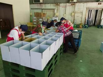中市力推買菜免出門 網購「蔬菜箱」4天銷售額近300萬