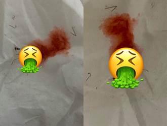 噁爆!擊殺蟑螂驚見大灘紅色 真相曝光網嚇壞:一屍多命