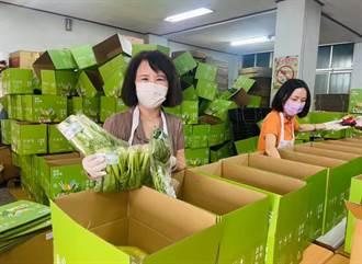 宅經濟正夯 嘉義縣府輔導蔬菜箱一周賣破3000箱