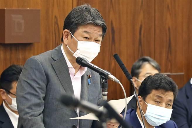 日本外務大臣茂木敏充5月25日戴著口罩,在參議院回答質詢的神情。(美聯社)