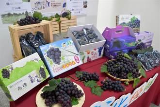 葡萄的逆襲 蔬果鳳梨地瓜等也跟進認購飆升中