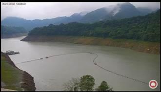 2周降雨有成 石門水庫蓄水率破20%
