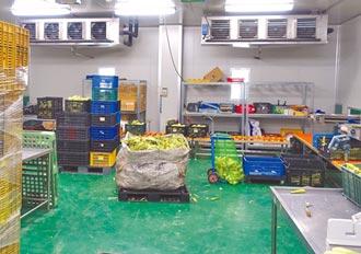 農糧署徵求短期葉菜截切加工廠