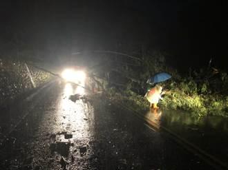 信義山區強降雨 南投警透早排除倒塌路樹