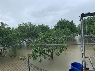 梅雨鋒面為台南3大水庫進帳8700萬噸 但農損近86萬