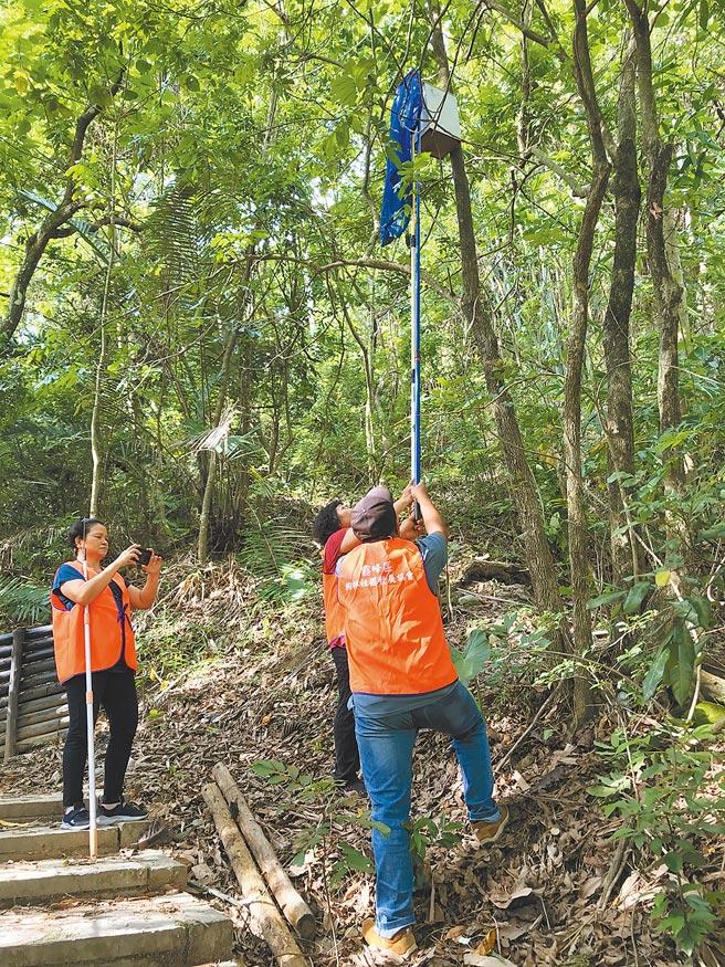 桐林社區居民以觀察棒觀察巢箱內的貓頭鷹活動情形。(桐林社區發展協會提供)