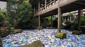 日本茨城縣雨引觀音 祈福除厄 繡球花開展希望