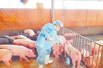 全台首見豬流感 女童確診感染源不明