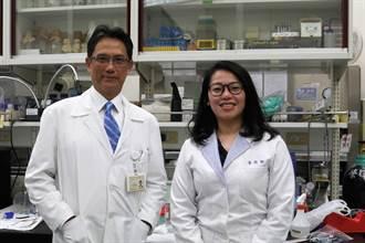 陽明交大團隊找到空汙導致染疫的機制  登國際期刊