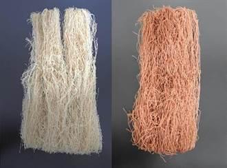 銀髮族及素食者福音!台中農改場推出「米-豆米粉」蛋白質含量提升10%