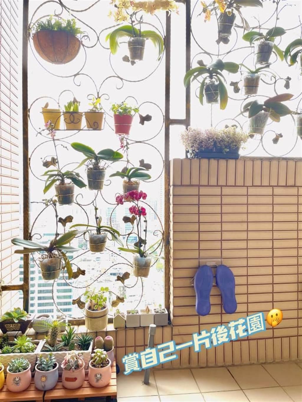 除了賦予實用機能,邱如禎也將陽台一角打造成居家小花園,挑選自己喜愛的植栽吊掛在陽台欄杆,就是一處迷人景色。(圖片提供/網友邱如禎)