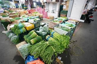 雨損產地葉菜飆漲7成 新北農業局:瓜果根莖類穩定