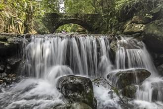 端午連假山林步道呼吸芬多精 溪流泡腳戲水能疏壓
