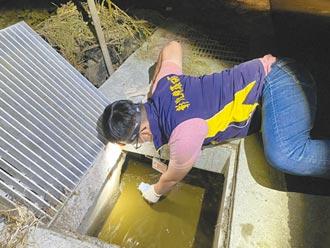 彰化6畜牧業偷排豬糞 重罰1.2億