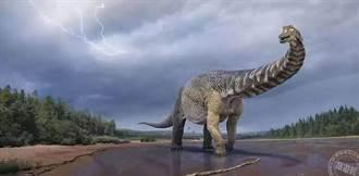 2007年昆士蘭被發現的恐龍遺骸 近日確定為澳洲最大恐龍並為新物種