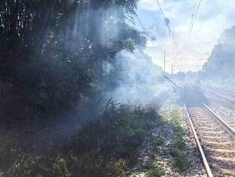 竹子倒塌壓到電車線 台鐵西正線新豐竹北間影響20車次