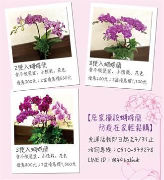 鼓勵民眾網路向花農直購花卉 嘉義縣府補助宅配運費到7月底止