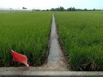 台南3大水庫水量仍少於去年同期 二期稻作是否供灌23日決定