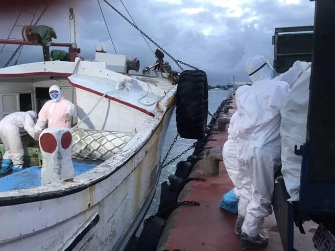 澎湖籍漁船走私逾噸魚翅乾貨,價值600萬元。(北門查緝隊提供/劉秀芬台南傳真)
