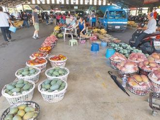 芒果節停辦 台南市府改衝外銷、宅配市場